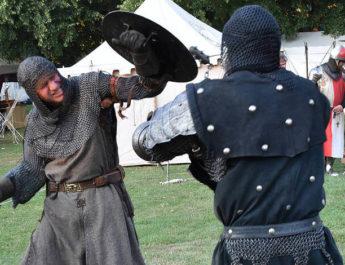 Schwertkampfshow auf dem Zunftmarkt Reutlingen