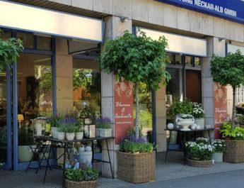Neue Adresse für Blumen & Ambiente in der Lederstraße 102